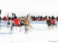 pferdeschlittenrennen-rottach-egern-001