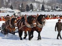 pferdeschlittenrennen-rottach-egern-002