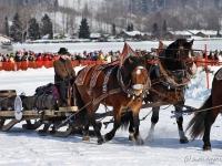 pferdeschlittenrennen-rottach-egern-003