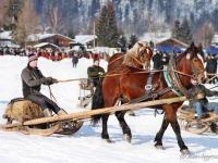 pferdeschlittenrennen-rottach-egern-006