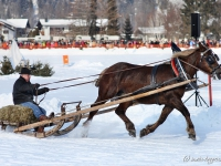pferdeschlittenrennen-rottach-egern-012