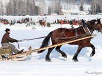 pferdeschlittenrennen-rottach-egern-016