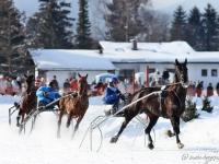 pferdeschlittenrennen-rottach-egern-019