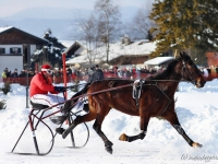 pferdeschlittenrennen-rottach-egern-021