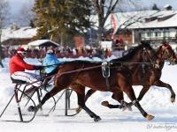 pferdeschlittenrennen-rottach-egern-024