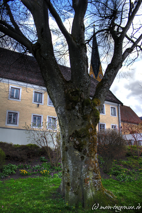 An der Seepromenade in Rottach-Egern