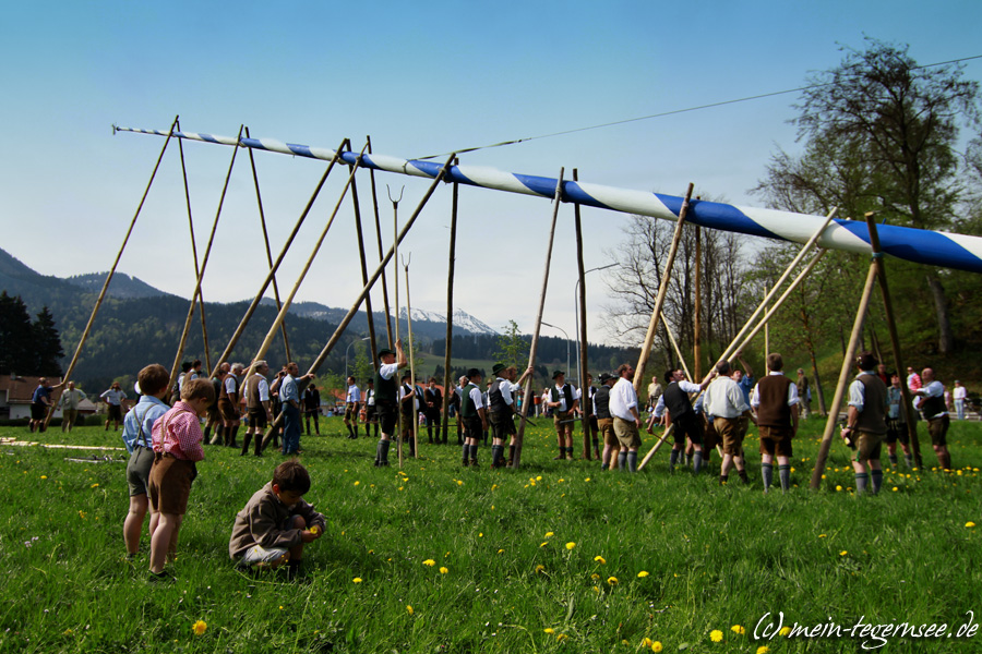 Maibaum in Bad Wiessee | Tegernsee