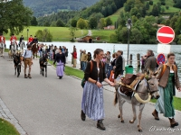 rosstag-rottach-egern-2012-006