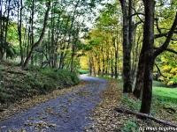 Herbstimpression Tegernsee