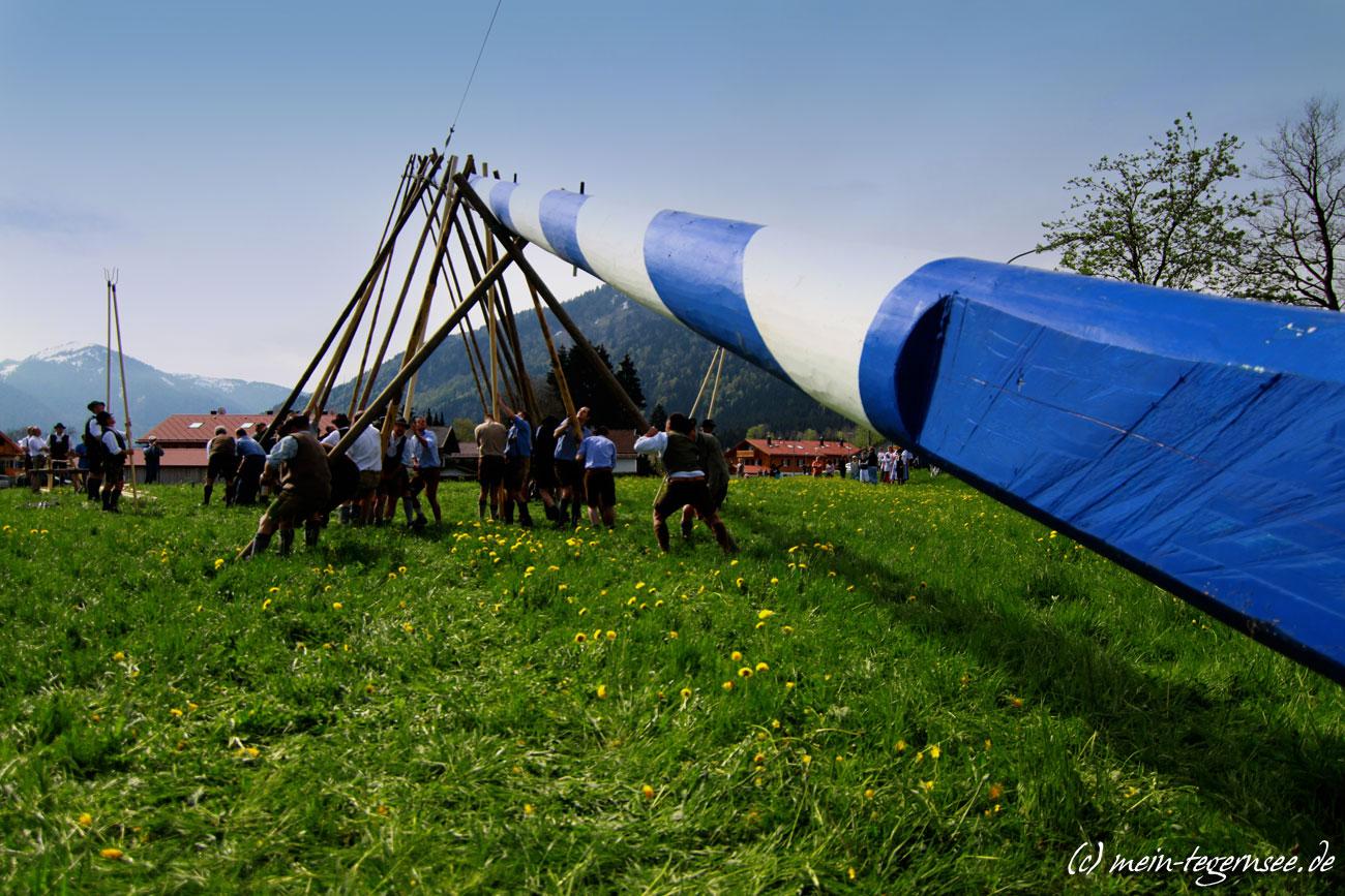 Maibaum-Aufstellen in Bad Wiessee 2012