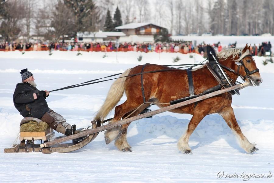 pferdeschlittenrennen-rottach-egern-013