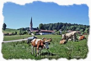Malerische Landkreis-Tour: Reichersdorf