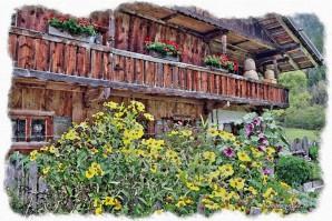 Malerische Landkreis-Tour: Schliersee