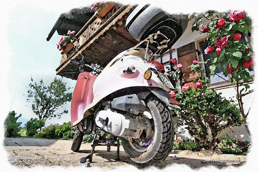 Rote Rosen treffen Rosa Roller in Waakirchen.