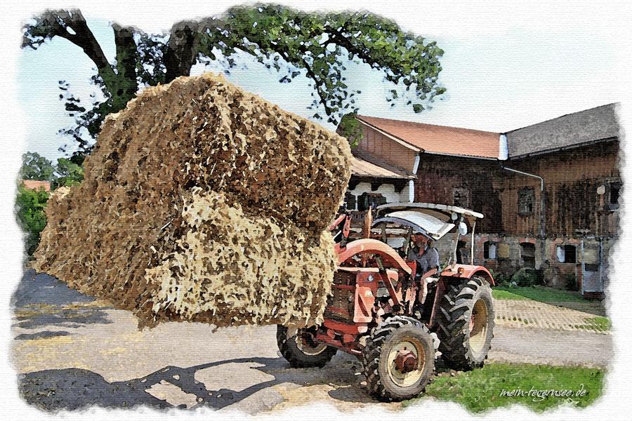 Arbeit am Bauernhof in Piesenkam.