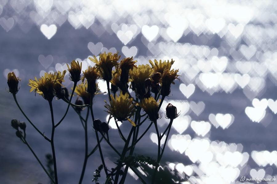 Blumenkomposition in sattem gelb