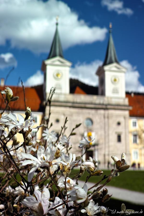 Die Pfarrkirche St. Quirinus Tegernsee im Frühling
