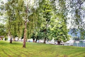 Liegewiese Strandbad Kaltenbrunn