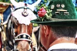 Rosstag Rottach-Egern 2015 – Bildertrecke No. 1