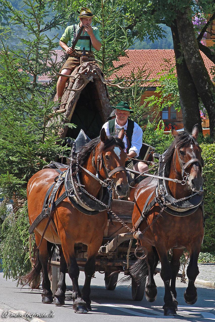 wallberger-waldfest-2015-005