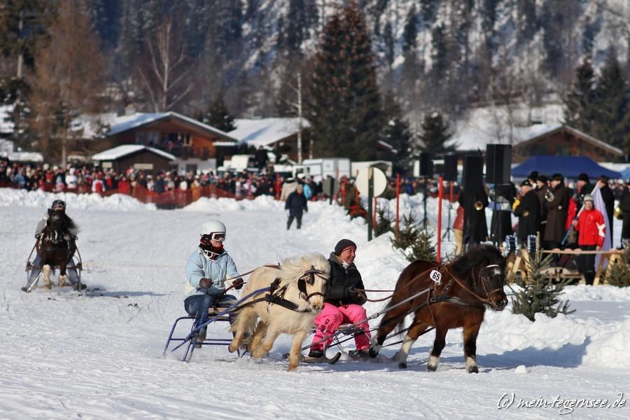 pferdeschlittenrennen-rottach-egern-004