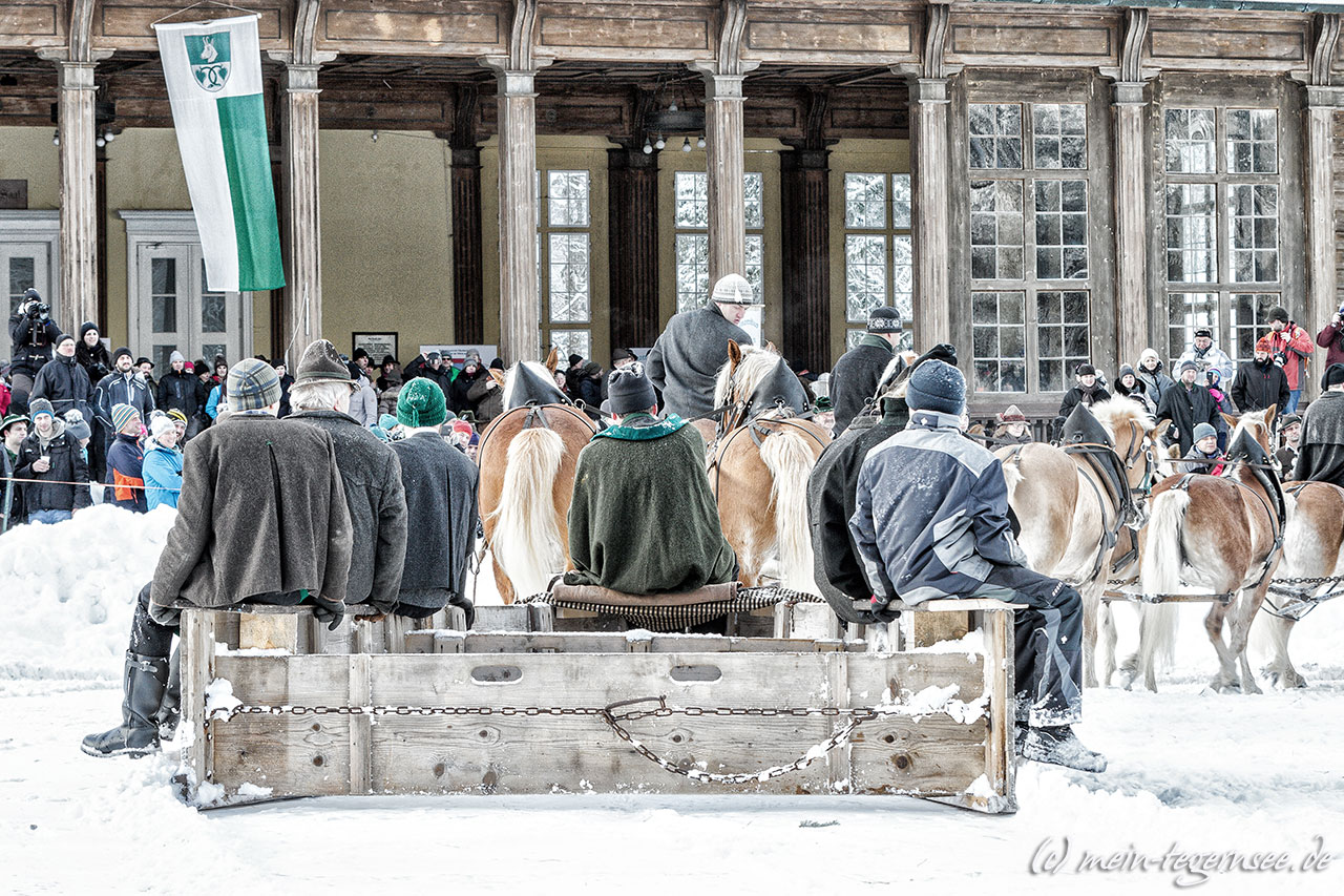 winterrosstag-2017-059